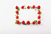 Fresh Red Strawberries Forming a Rectangular Frame on a White Background