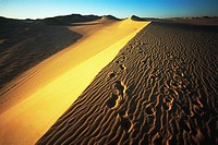 Abstract view of a sand dune in the western desert of Egypt