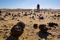 Photographer taking pictures of the western desert of Egypt