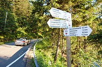 Convertible passing road near Lake Mummelsee, Seebach, Black Forest, Baden_Wuerttemberg, Germany