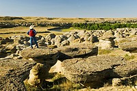 hiker along the Milk River Valley, Writing On Stone Provincial Park, Alberta, Canada