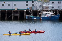 Kayakers in Inner Harbour, Victoria, British Columbia, Canada