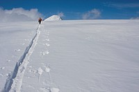 Men ski touring, Columbia Icefields, Jasper National Park, Alberta, Canada