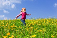 girl running through field of Dandelions,Zuercher Oberland, Zuerich, Switzerland