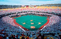 Photo impression of infield at Veteran's Stadium, Philadelphia, Pennsylvania