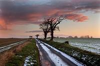 Sunset over Winter Farmland Southrepps