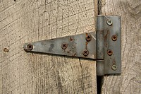 Rusting screws hold an old barn door hinge.