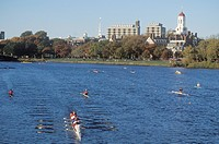 Rowing race, Charles Regatta, Cambridge, Massachusetts