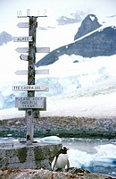 Directional sign and penguin at Chilean Station, Paradise Harbor, Antarctica