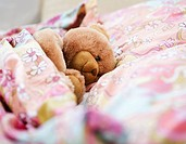 Teddy bear in bed