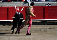 Bullfighter gets chased by a bull