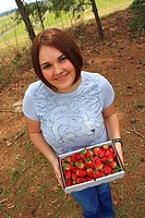 Woman Holding Fresh Picked Strawberries hand-picked at an orchard in Grimes County, Texas