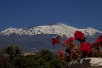 View from lemon grove of active volcano Mt. Etna.