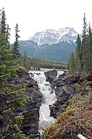 Athabasca Falls in Jasper National Park, Canada.