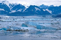 Columbia Glacier and Icebergs floating on Prince William Sound, Alaska, USA