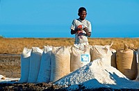 Harvested salt. Boy sewing up bags of salt harvested from salt pools. Photographed in Ifaty, Madagascar.