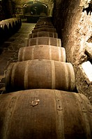 Barrels of wine at Heredad Ugarte Rioja Winery  Laguardia  La Rioja  Alava  Spain