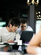 Two men using laptop in restaurant