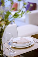 Place Setting on dining table