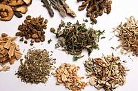 Chinese Herbal Medicine, Prescription