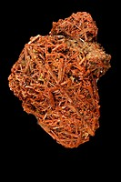 Crocoite - PbCrO4 - Lead Chromate - Tasmania - Australia - Once used as an ore of chromium