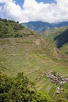 Batad Village, Northern Luzon. Philippines