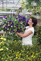 Woman looking at hanging basket