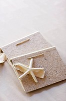 starfish and book with tag
