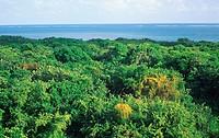 Juventud Island Cuba