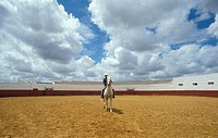 Spain _ Andalusia _ Private arena in farm