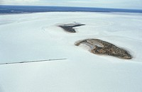Australia, Fitzroi Lake and salt fields, aerial view