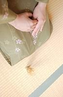 A woman in kimono sitting on tatami mat
