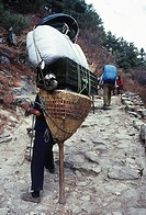 Porter with his load approaches Namche Bazar, Solo Khumbu district, Everest region, Nepal