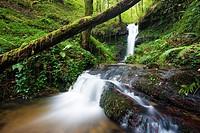 Brook, Callejamala. Otañes, Castro Urdiales, Cantabria, Spain.