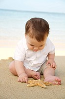 Hawaii, Baby boy on beach with starfish.