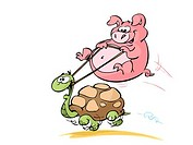 Big pig riding turtle