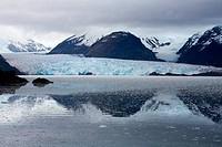 Chile, Southern Patagonian Ice Field, O´Higgins National Park, Amalia Glacier Skua Glacier