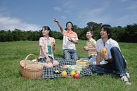 Four young people enjoying picnic