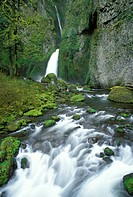 Wahclella Falls on Tanner Creek, Columbia River Gorge National Scenic Area, Oregon