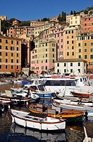 Italy, Liguria, Camogli, the harbour