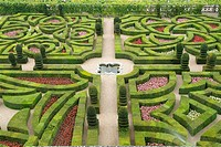 France, Indre_et_Loire, Villandry castle, garden
