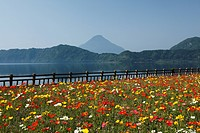 Flower Garden, Ibusuki, Kagoshima, Japan