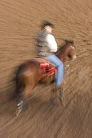 Rodeo cowboy on horse,