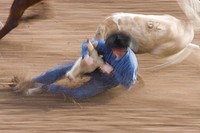 Rodeo blurred action with cowboy on the ground