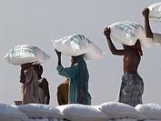 Bangladesh,Dhaka. Workers unloading sacks of fertilizer from boat