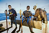 spearfishermen with powerheads or bang sticks, off Tampa, Florida, USA, Gulf of Mexico, Caribbean Sea, Atlantic Ocean Not to be used for anti-spearfis...