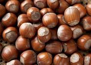 Hazelnuts full_frame