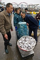 Buyers and sellers weigh fresh catch at harbor side fish market, Zhoushan City, Zhoushan Archipelago, Zhejiang Province, China