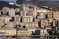 Italy, Liguria, Genoa cityscape