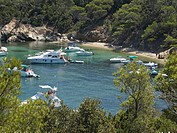 France, French Riviera, Porquerolles Island